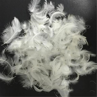 White Goose Feather PRD-DF21004